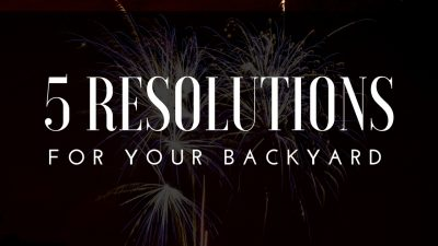 5 New Years Resolutions For Your Backyard